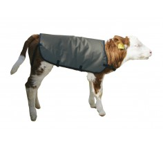 Calf Coat