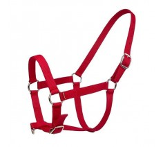 Nylon Head Collar All Sizes